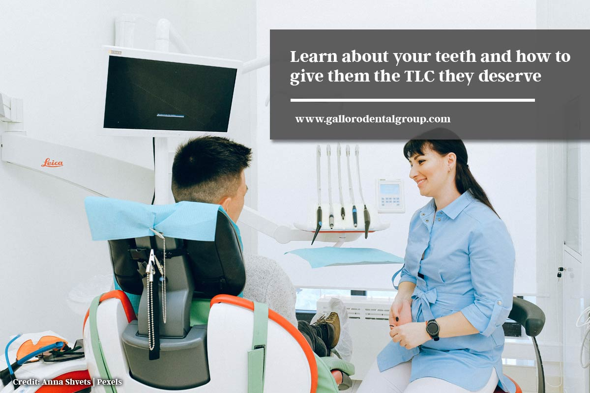 Learn about your teeth and how to give them